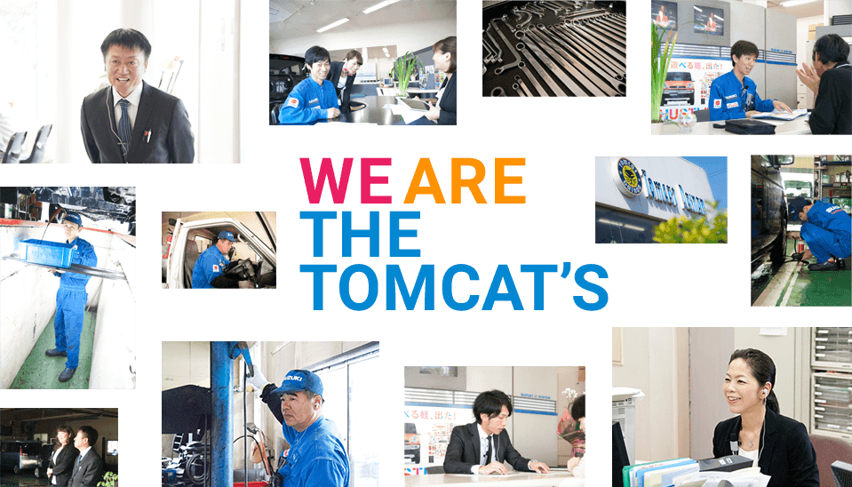 we are the tomcat's