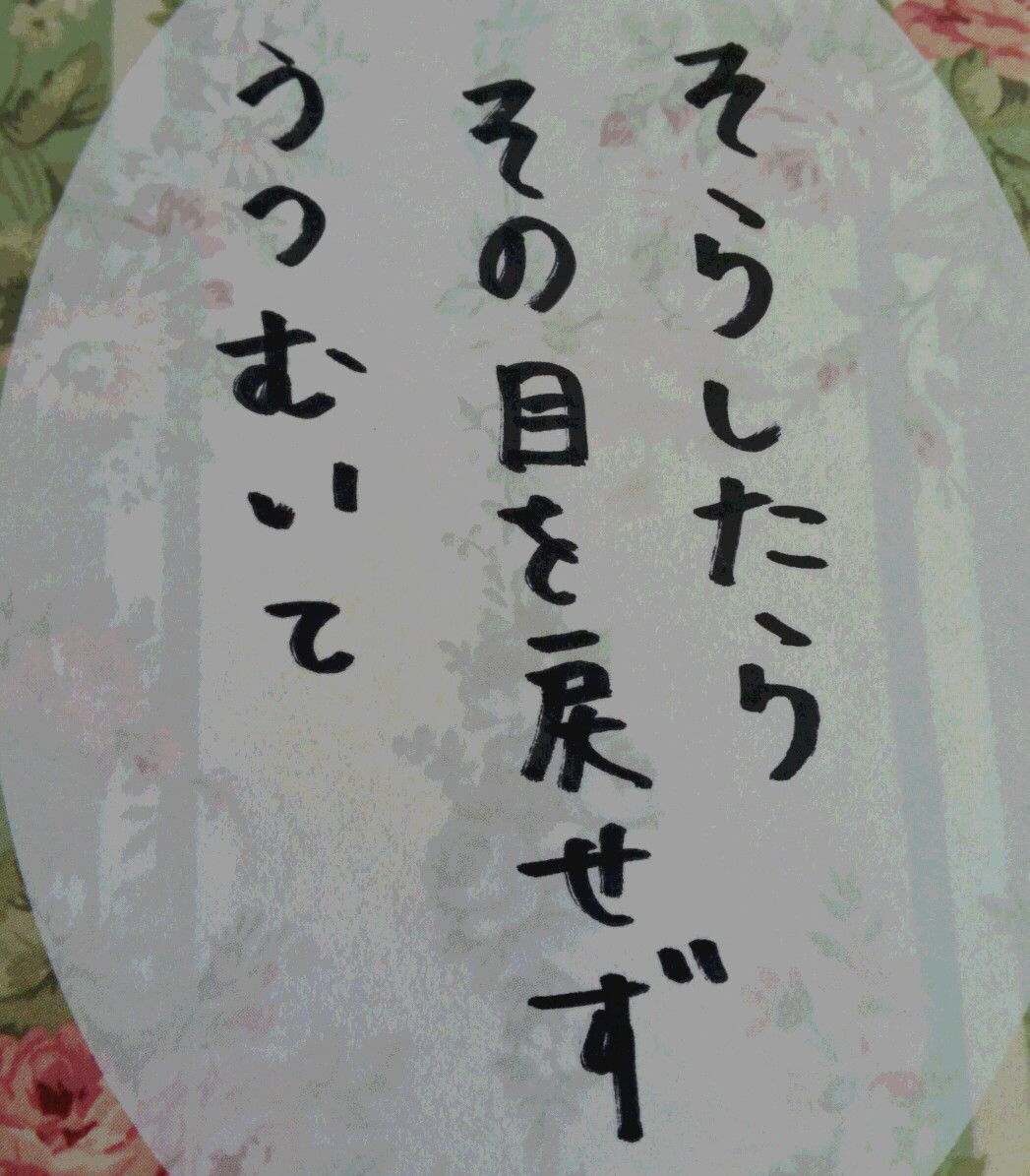16-12-27-11-01-42-587_photo-1